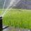 Особенности организации автополива газона и остального сада